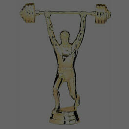 Wrestling - Weightlifting