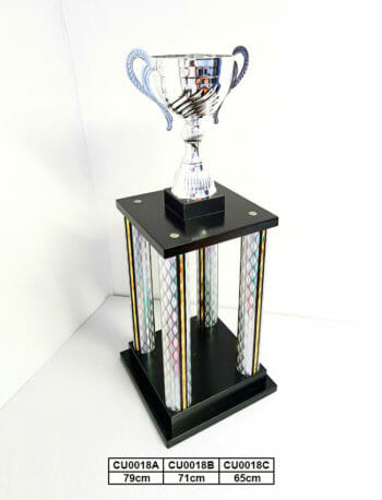 Euro Metal Cups 2
