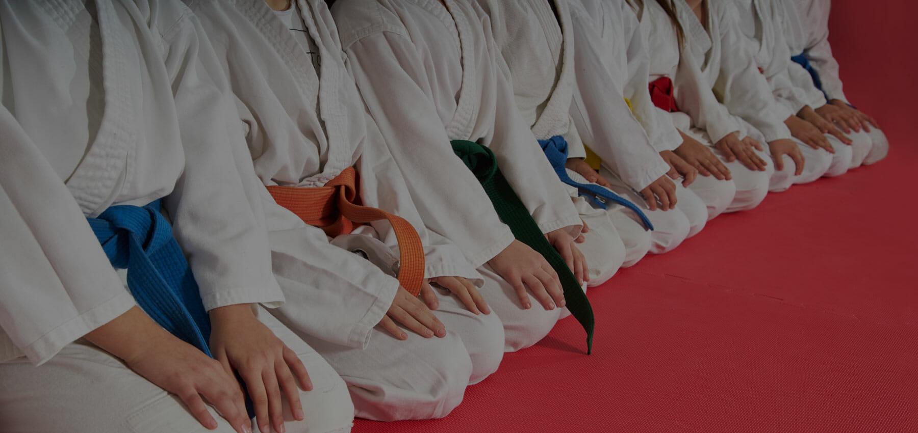 karate banner
